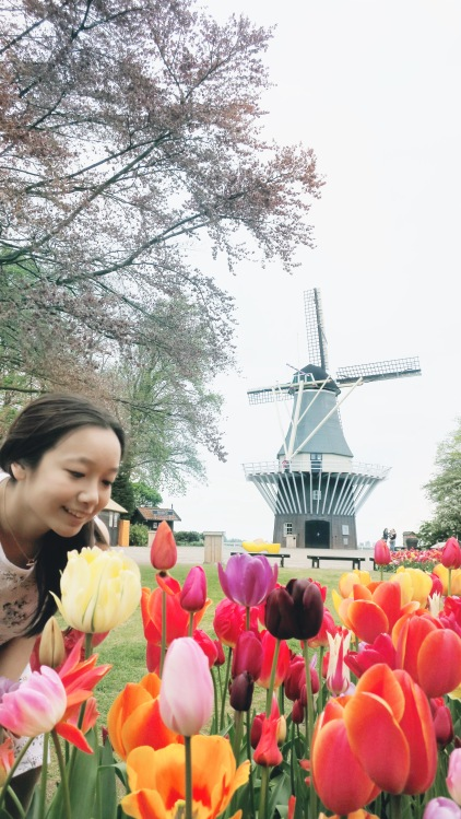 keukenhof profile photo.jpg